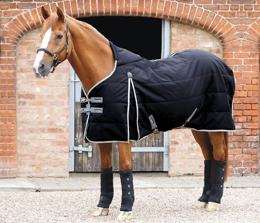 Premier Equine Lucanta stable 100