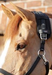 Premier Equine Magni-Teque poll band