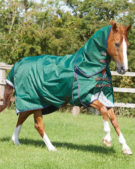 Premier Equine Akoni Stratus 0 gr with neck cover