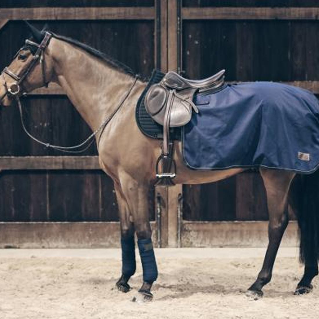 Kentucky riding rug all weather
