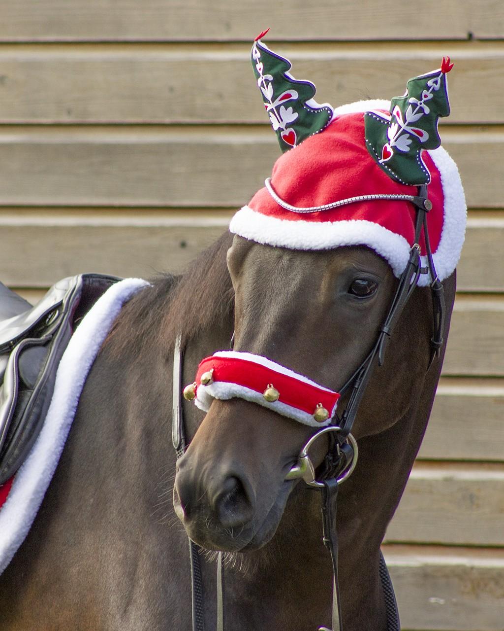 Ørehette juletre