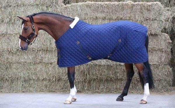 Kentucky Stable rug